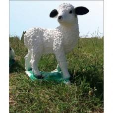 Gerçek Gibi Detayl Beyaz Koyun Yavrusu Süt Kuzu Tasarımlı İç ve Dış mekan 50 cm Mermer Bahçe Heykeli