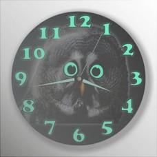 Siyah Koyu Zemin Gözleri ve Rakkamları Fosforlu Baykuşlu Bombe Camlı Sessiz Çalışan 35cm Duvar Saati